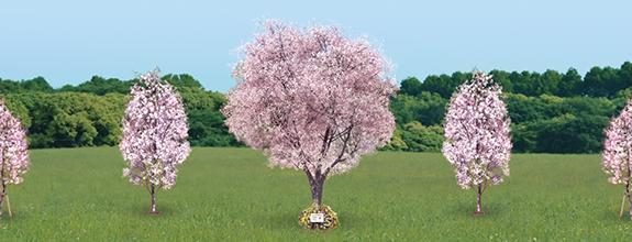 桜の植樹 自然に還る