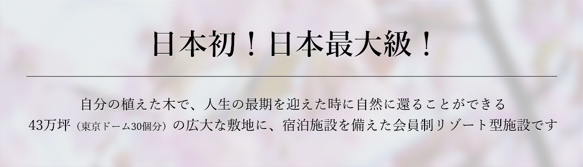 日本初!日本最大級!!